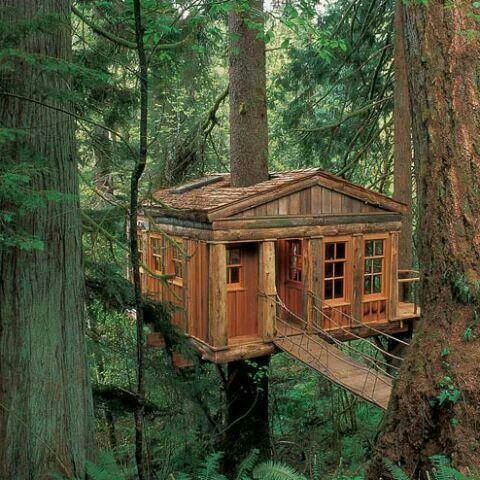 Cute treehouse!!