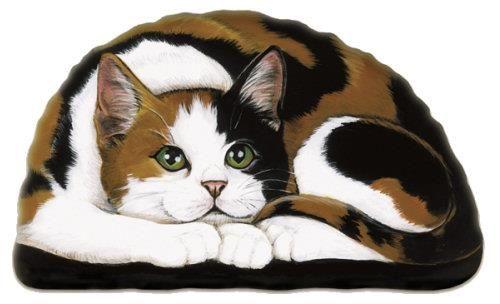 Calico Andtortoiseshell Cats Calico Andtortoiseshell Cats Pintere