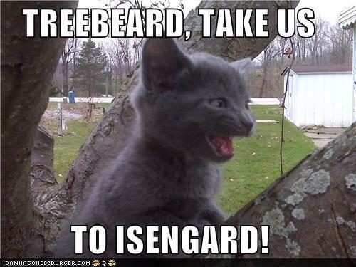 Treebeard go!
