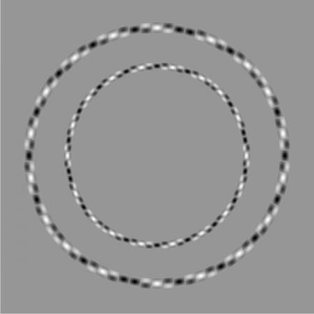 Two perfectly round circles - Optical illusion