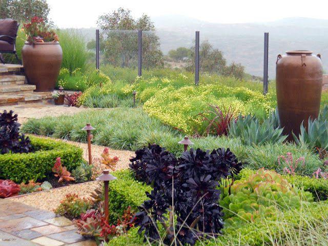 Succulent Garden Backyard Pinterest