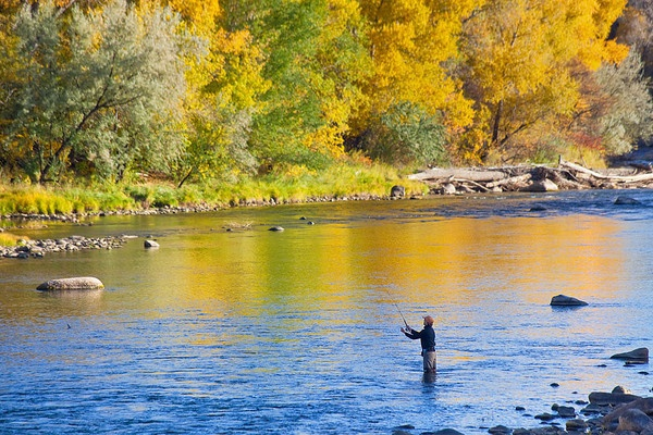 Pin by candee proctor on been there done that pinterest for Durango co fly fishing