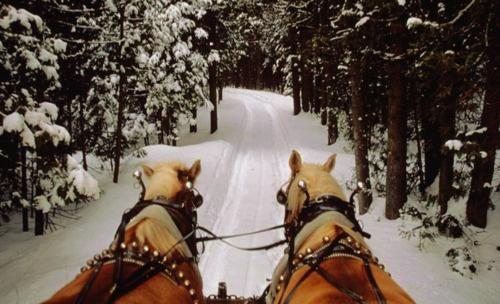 *dashing through the snow* WOW!