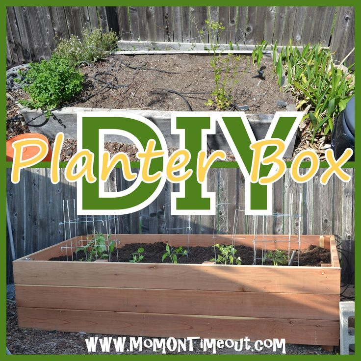 Backyard Garden Boxes : DIY} Garden Planter Box  Garden  Outdoor Projects  Pinterest
