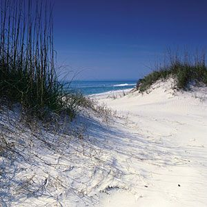 """St. Joseph Peninsula State Park, Florida.    """"After breakfast, I followed a wooden walkway across massive sand dunes to look out on the wide beach that arcs into the turquoise waters of the Gulf of Mexico. Without any cars or buildings to mar the view, the sand dunes are magnificent. They soar up to 55 feet, some of the tallest in all of Florida. This morning, except for a few other early risers strolling in the distance, the only inhabitants I see are flocks of shorebirds, a squadron of pelicans, and a starfish as big as a salad plate, set down by the surf at my feet. Welcome to paradise."""""""
