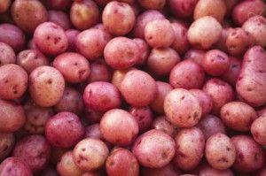 Stuffed Baby red potatoes #Vegan   Veggie Dishes   Pinterest
