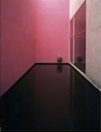 Another of his great uses of pink: hot pink plus baby pink with a black floor.  A powerful space.