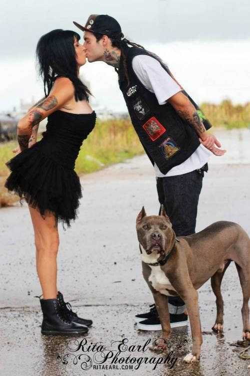 Pit Bulls and Parolees Tania