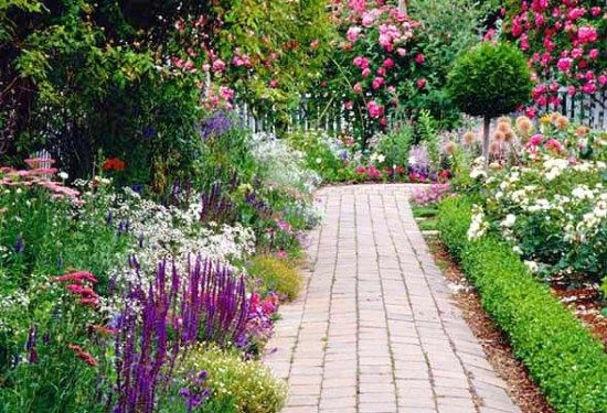 Types Of Summer Flowers Perennials That Bloom All Summer
