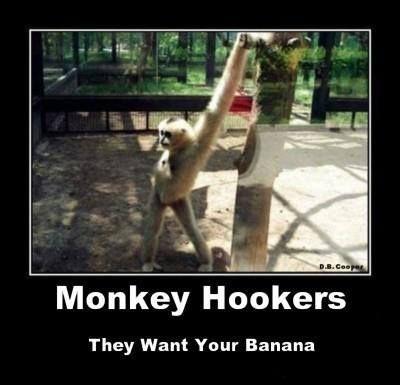 Ahahaha Monkey Hookers