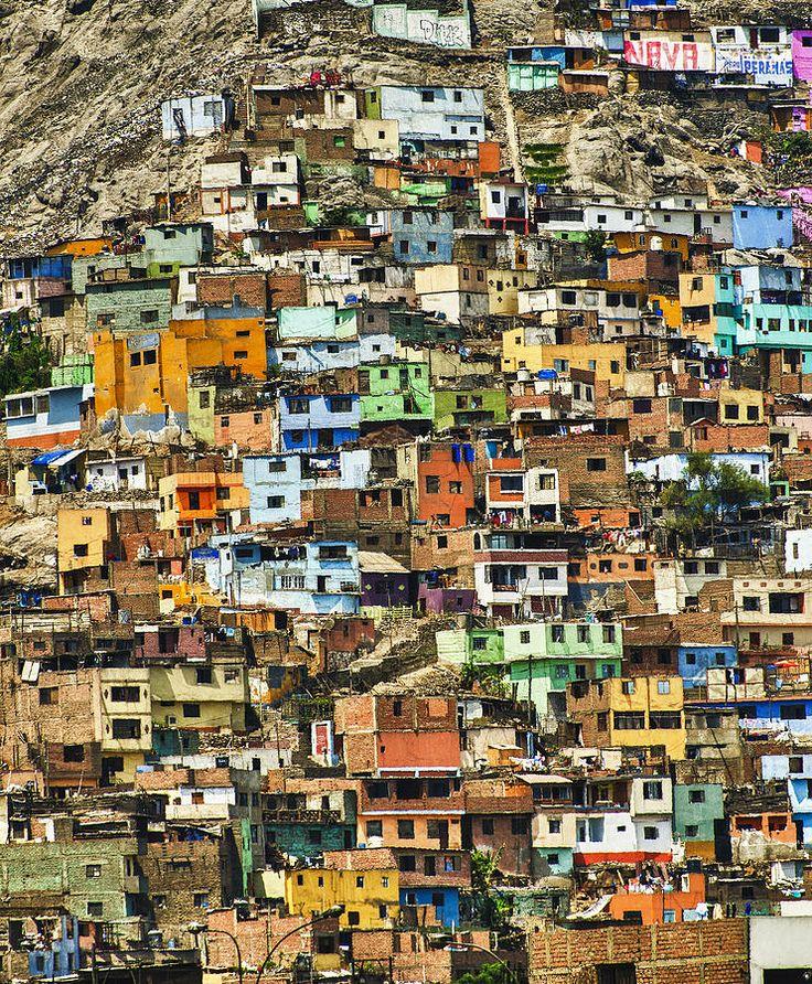human impact on biodiversity essay