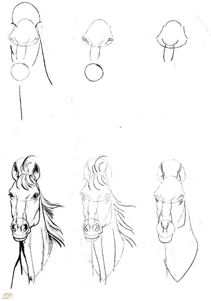 Научиться рисовать 3д рисунки поэтапно