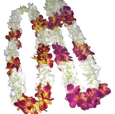 Orchid Flower Garlands Indian Wedding Ideas Pinterest