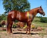 Horse Hair Extensions Color 106