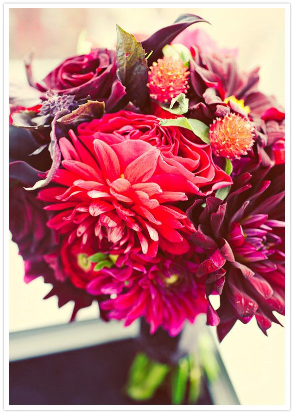 red dahlia bouquet - very dramatic look. good colors for a november wedding. hmmm...