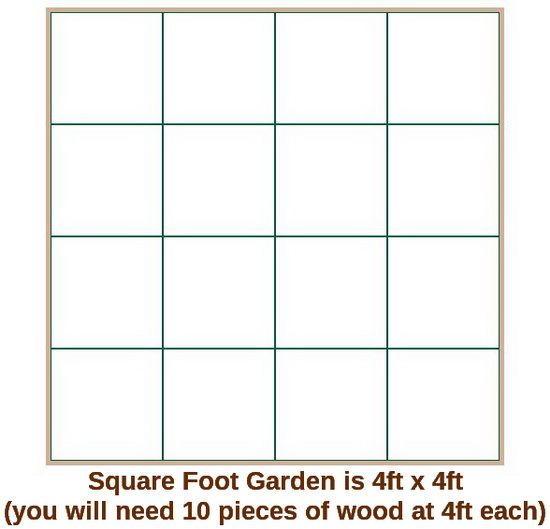 The perfect square foot garden layout helpful tips diy for Perfect garden layout