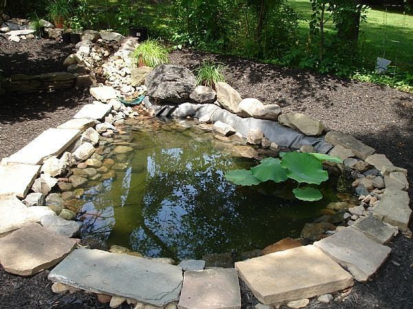 How To Create Your Own Koi Pond