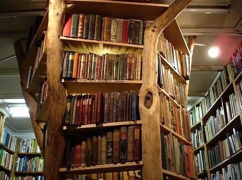 very cool bookshelves inspirations pinterest