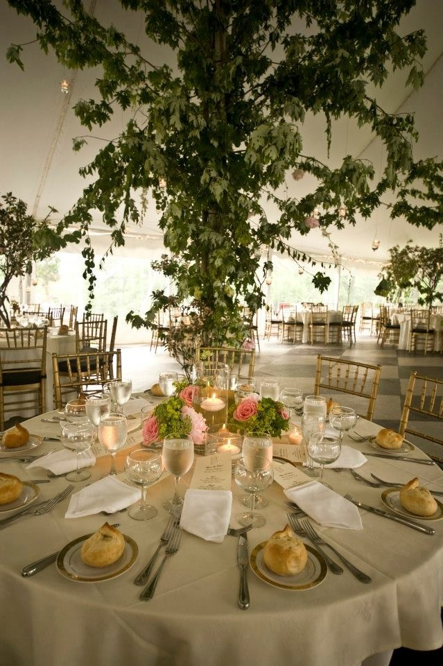 Wedding Tent Decoration Photos Ideas Outdoor Picture