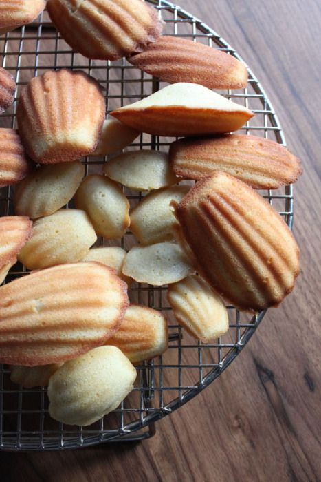 Vanilla Madeleines | Sugar Rush | Pinterest