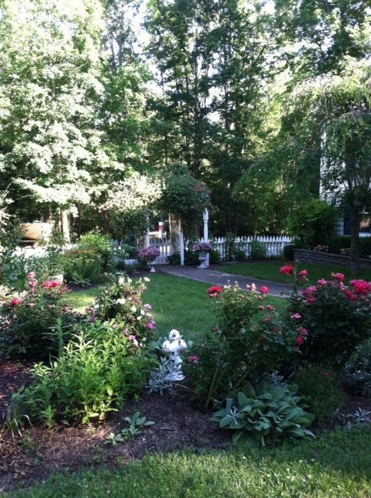 Pop Pop's Garden