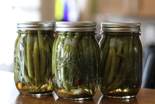 Pickled spicy green beans Me and my best friend probably ate like ...