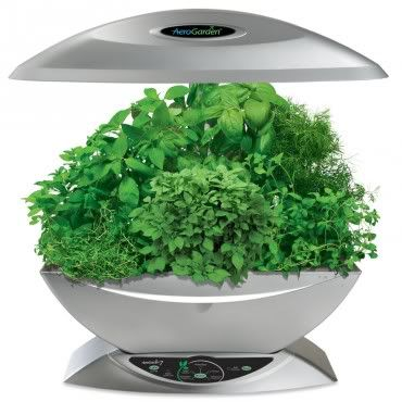 Aerogarden - the perfect gardening gadget for dummies. Heh.