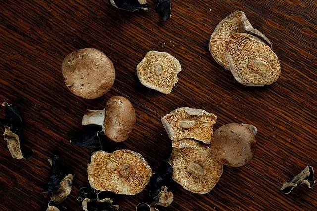 365/11.4.10 (cremini, shitake, & wood ear mushrooms) by art and lemons ...