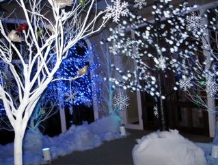 Winter dance winter formal ideas pinterest for Winter dance decorations