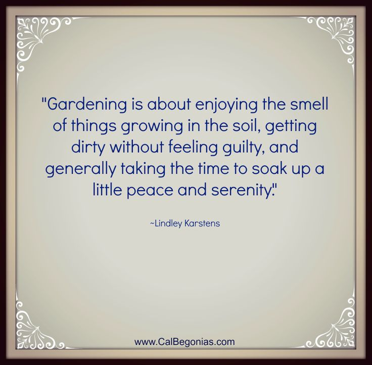 gardening quotes inspirational images