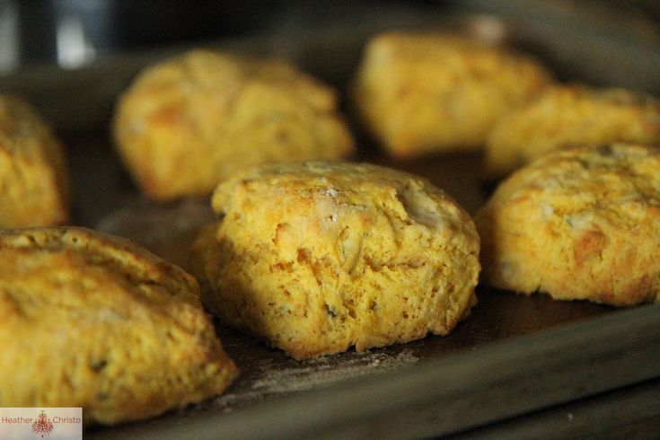 pumpkin biscuits....wonderful...did not make the blue cheese stuff ...