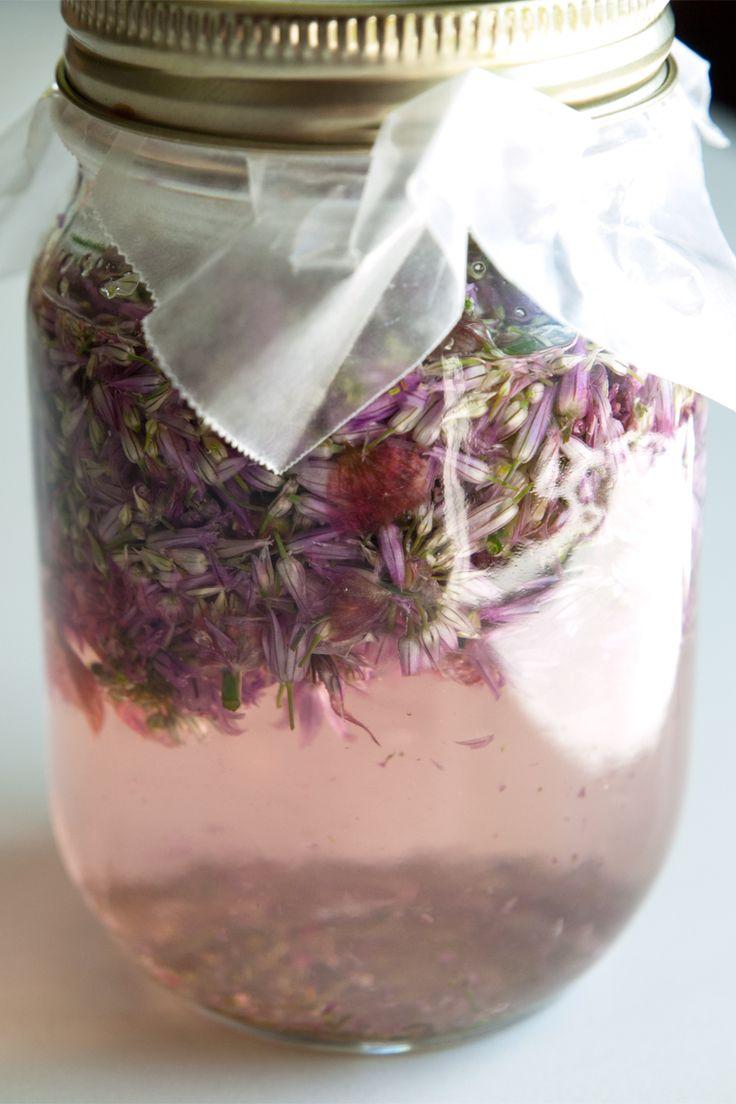 Chive Blossom Vinegar | Garden Harvested... Now What? | Pinterest