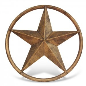 Texas lone star decor dream home pinterest for Lone star home decor