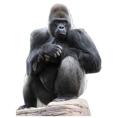 Turn Out >> Cut out gorilla | carnival jungle brazillian | Pinterest