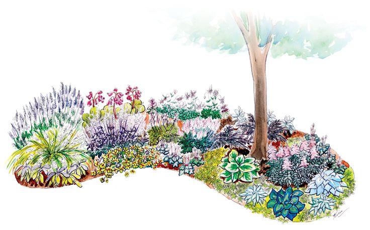 Watercolour flower bed plan garden plans pinterest for Flower bed planner