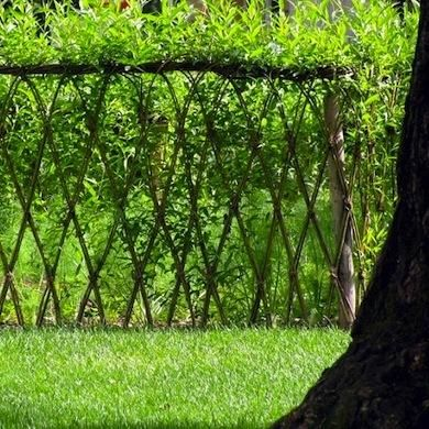 Living Fences 11 Boundary Setting Solutions