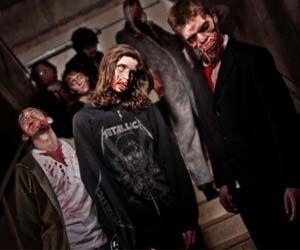 Zombie survival experience england