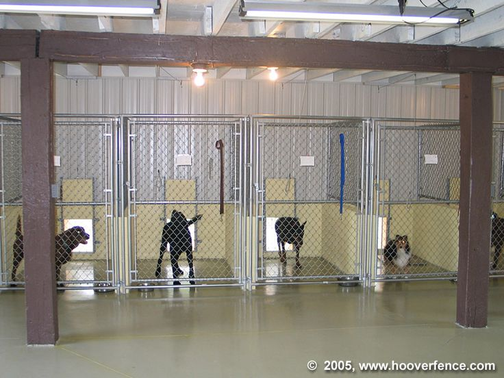 Pin by sheila conrad on kennel ideas pinterest for Building a dog kennel business