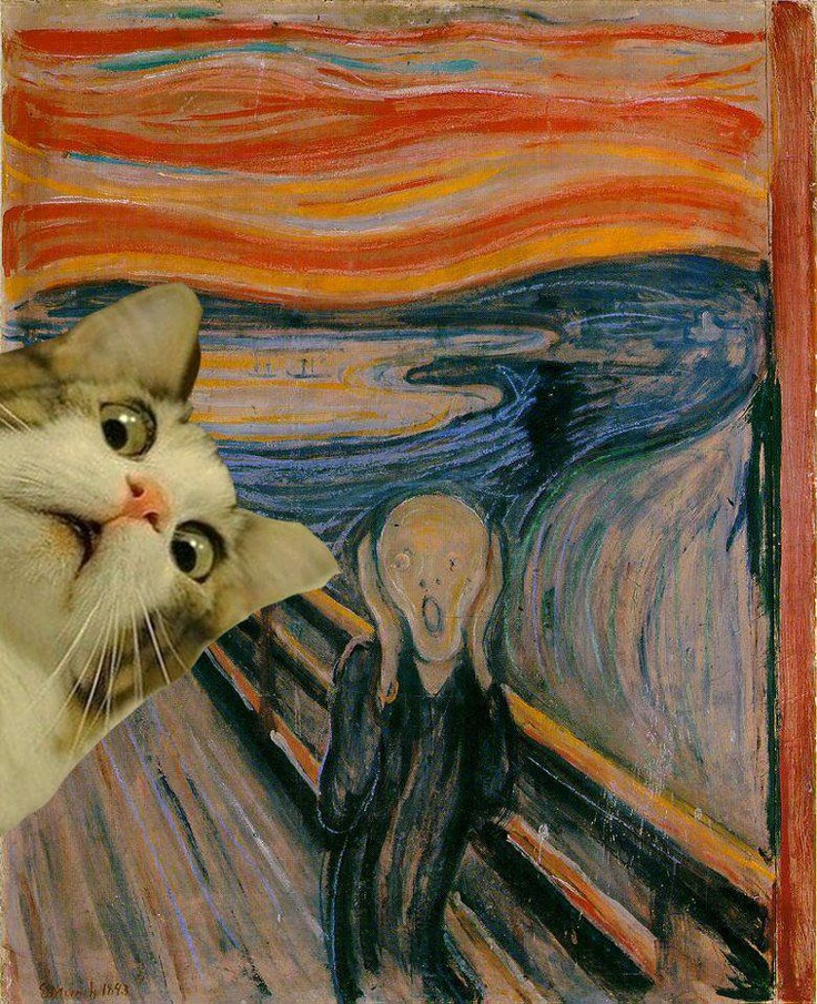 cat as part of the scream pic lol