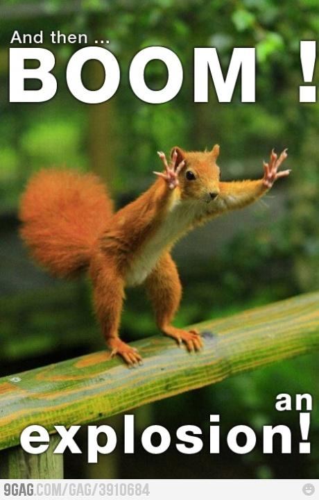 storyteller squirrel is storytelling....