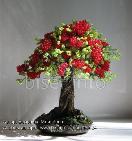 17 Best images about bonsai.. on Pinterest | Bernina 215, Pink orchids ...