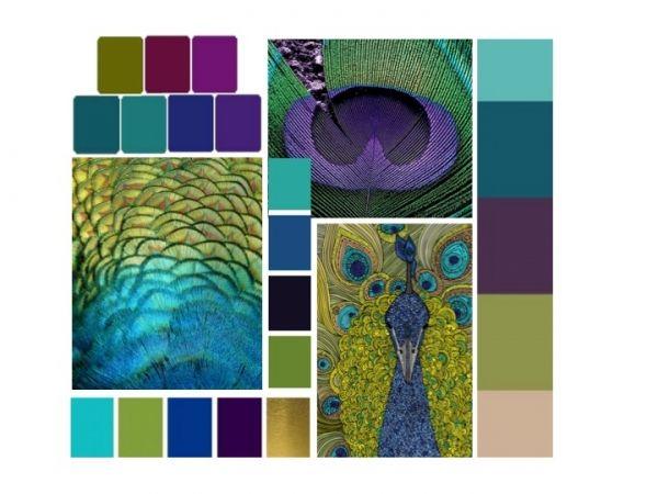 Decoration chambre bleu paon gascity for for Couleur bleu paon