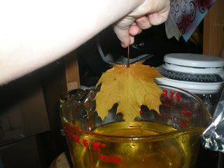 Wax Dipped Fall Leaves