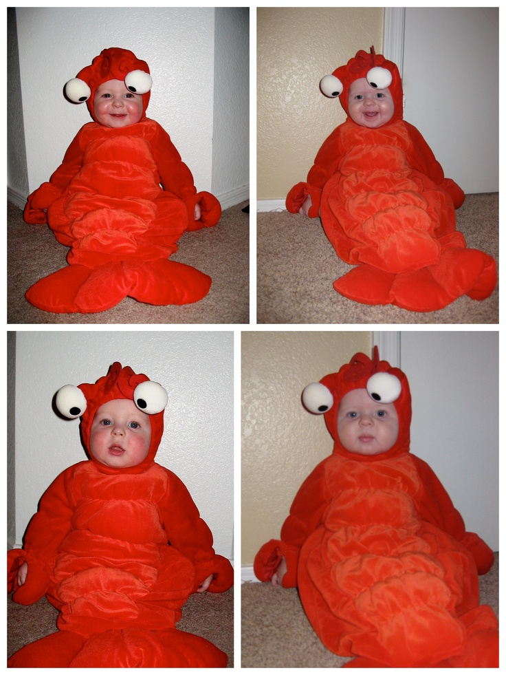 Baby Lobster Costume Seasonal Fall Ing Over