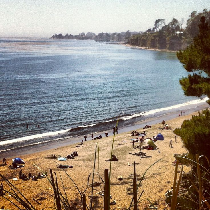 Pin by reserveamerica on california campgrounds pinterest for Santa cruz fishing