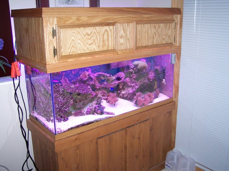 Diy aquarium canopy in case i have spare time pinterest for Fish tank lids with lights