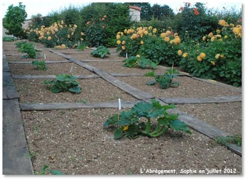 wooden walkway around vegetables vegetable garden pinterest