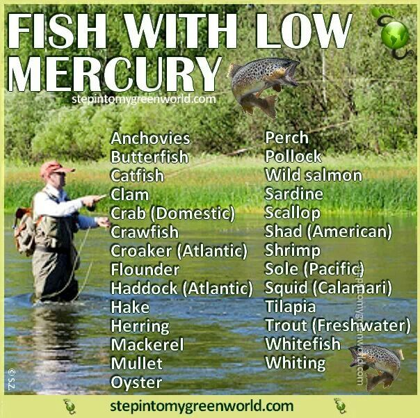 Low mercury fish cook it up pinterest for Fish with low mercury
