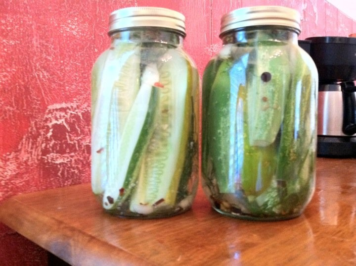 Homemade Kosher Dill Pickles. | Recipes | Pinterest