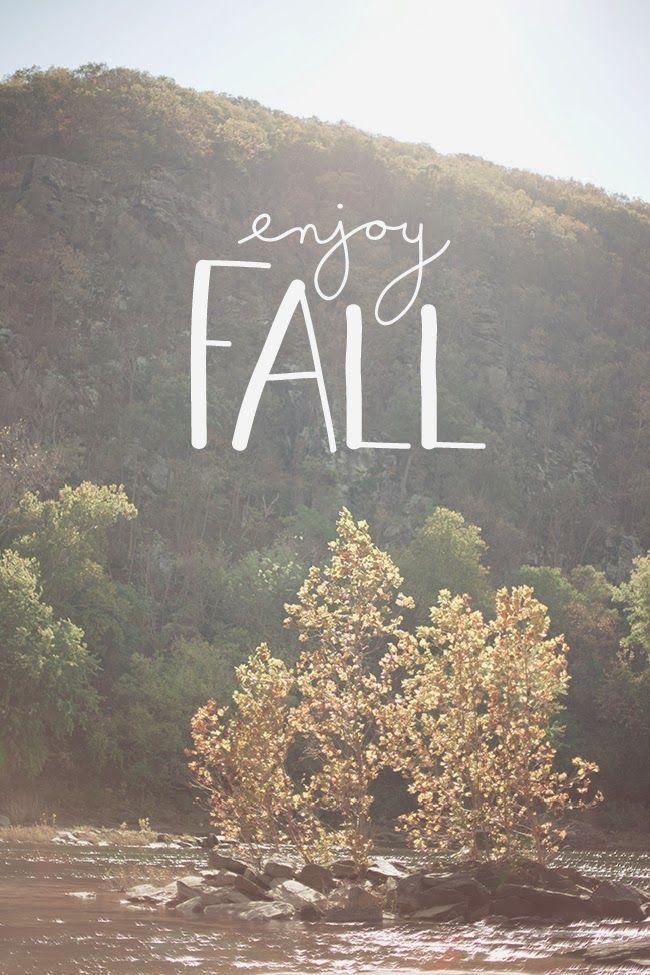 ENJOYING FALL | DESIGNING A LIFE BLOG | Fall Should Be A Holiday ...: pinterest.com/pin/105693922478571797